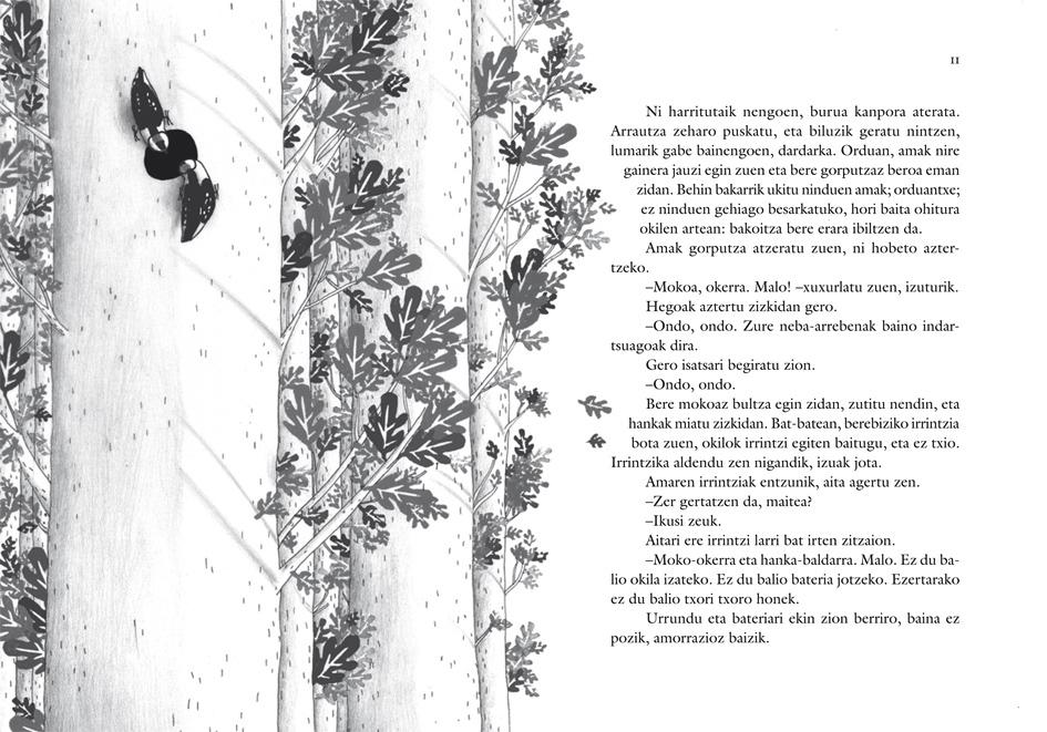 maite gurrutxaga-alberdania-txoritxoroa-2011-2